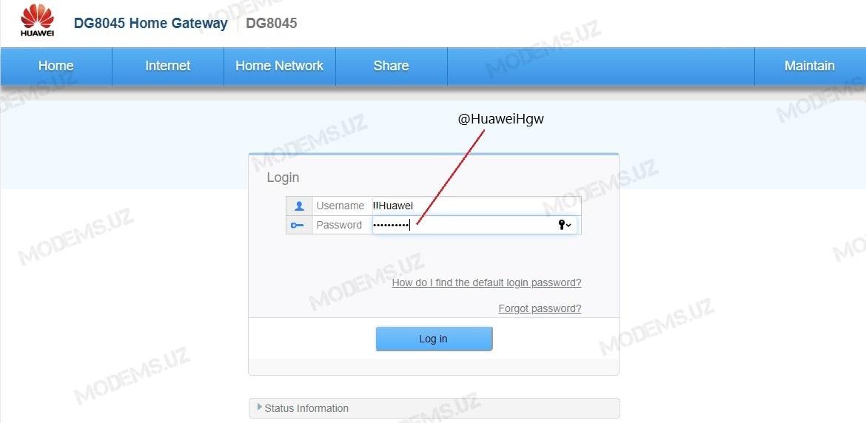 Huawei-DG8045_1